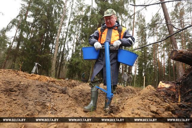 Руководство сажало деревья вСмолевичском лесхозе— Республиканский субботник