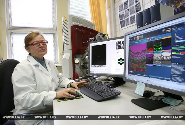 Применение сканирующего электронного микроскопа в таможенной экспертизе