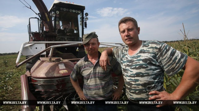 Комбайнёр Олег Пискун и тракторист Сергей Дикан (слева направо)