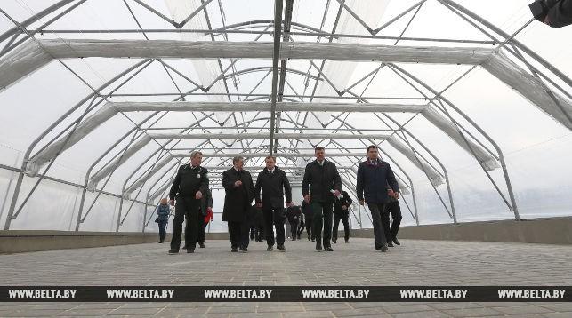 Лесосеменной комплекс открылся в Ивацевичах