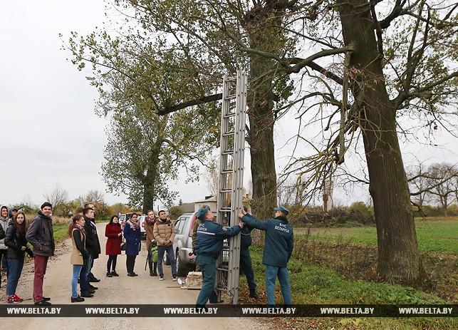 Подготовка к установке гнездовья для редкой самой большой в Беларуси утки