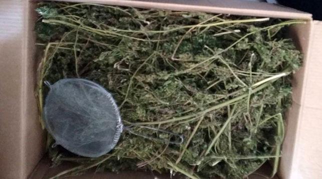 как улучшить качество сухой марихуаны