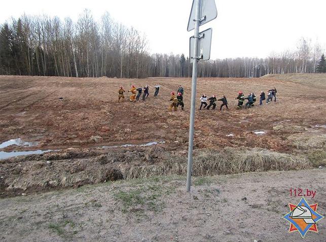 ВВитебском районе лошадь застряла ввязкой земле. Спасали еетолокой