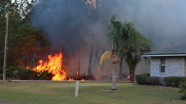 ВоФлориде напомощь пожарным пришел дождь
