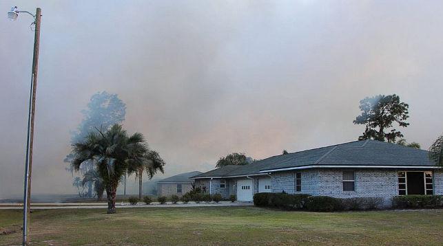 Вамериканской Флориде полыхает лес, эвакуировано около 9 тыс. домов