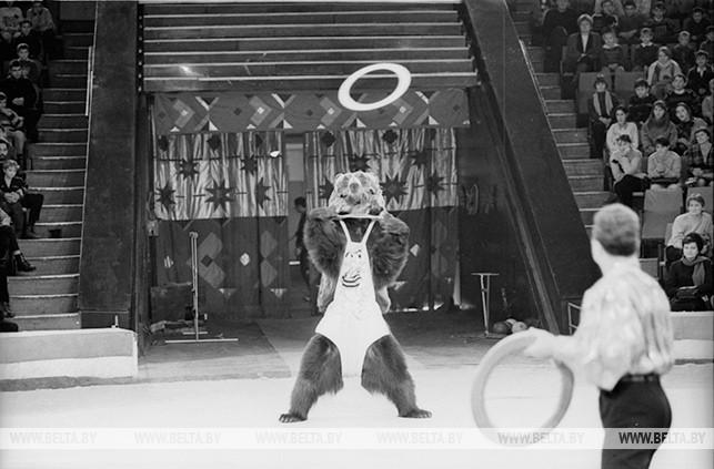 Дрессированные медведи Раисы и Гранта Ибрагимовых на арене Белорусского государственного цирка. 1997 год