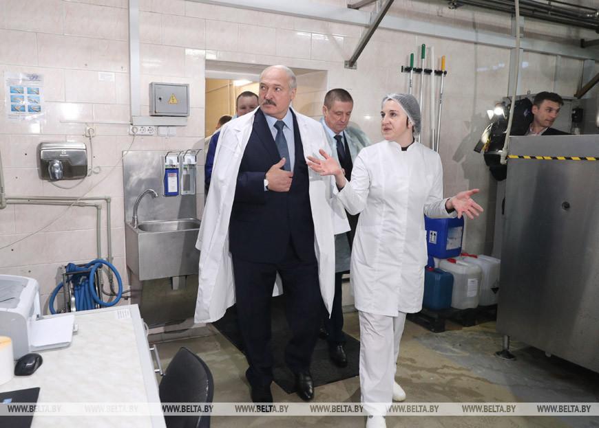 Александр Лукашенко во время посещения маслодельного завода